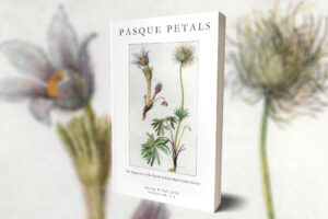 Call for Poems: Spring 2017 Pasque Petals